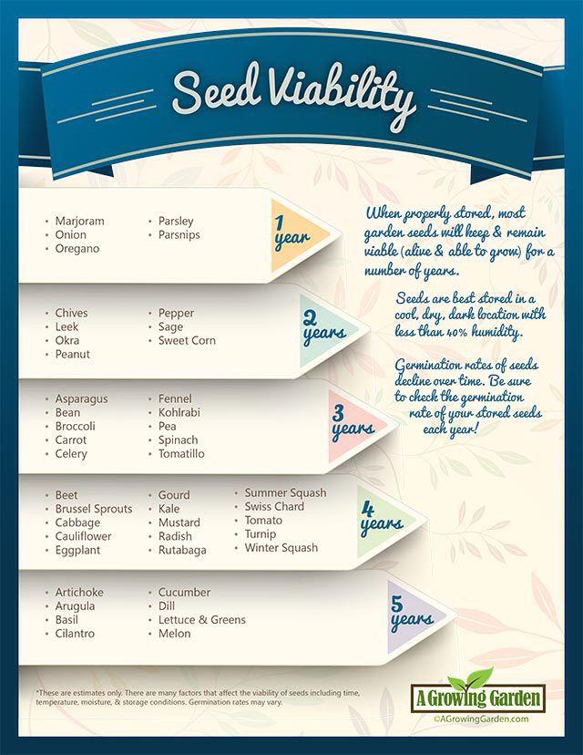 Seed viability chart also garden seeds rh pinterest