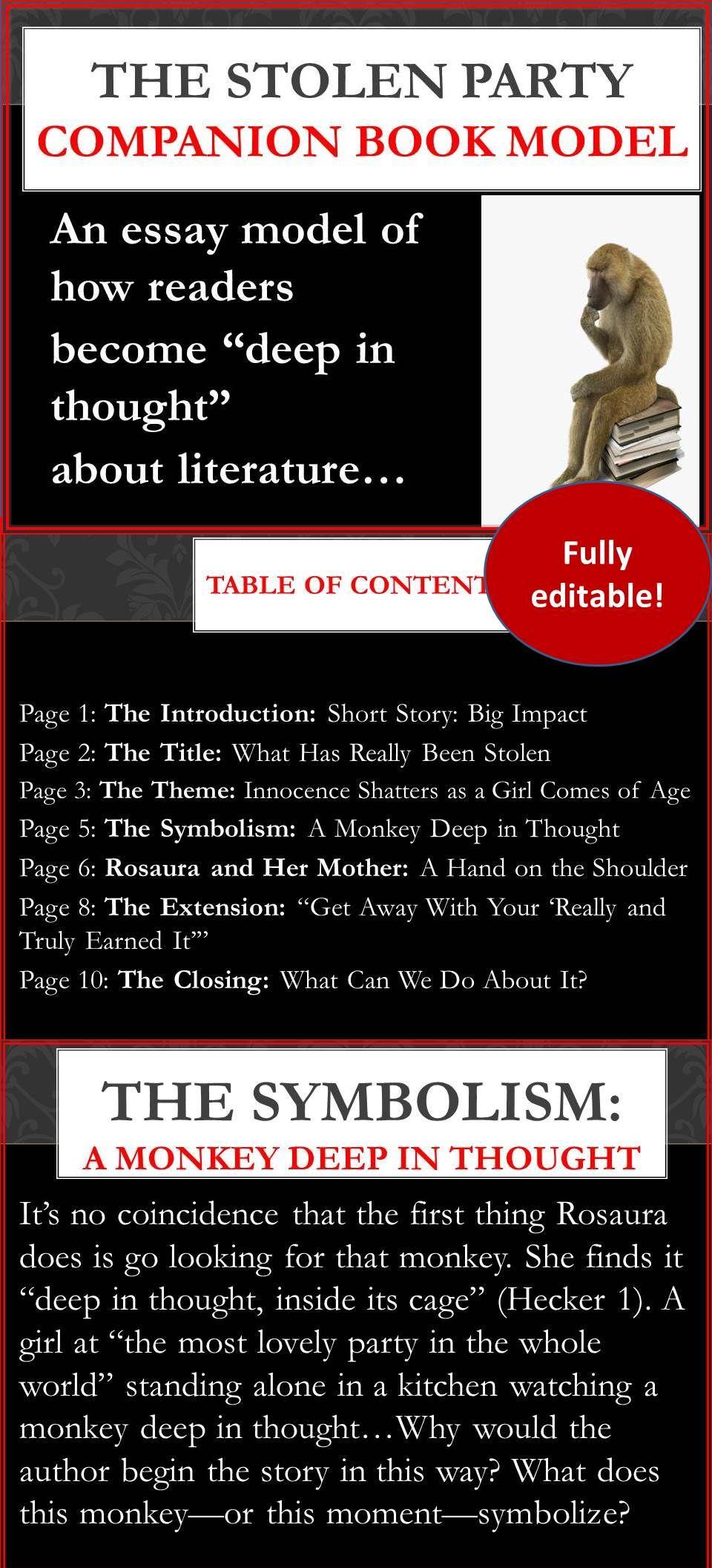 The stolen party companion book model teachers college essay teacher biocorpaavc
