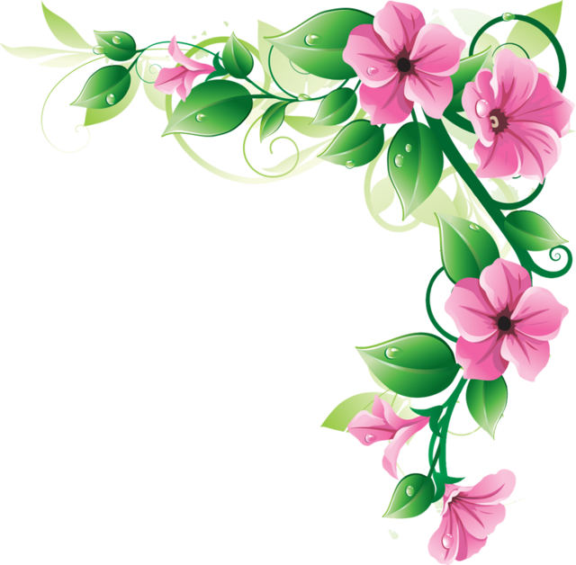 Pink Flower Line Drawing : Pink flower border clipart panda free
