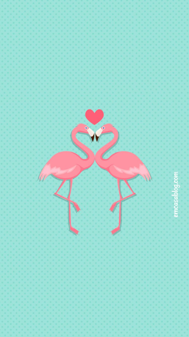 Background flamingo flamingos iphone wallpaper wallpaper - Freebie Wallpaper Celular