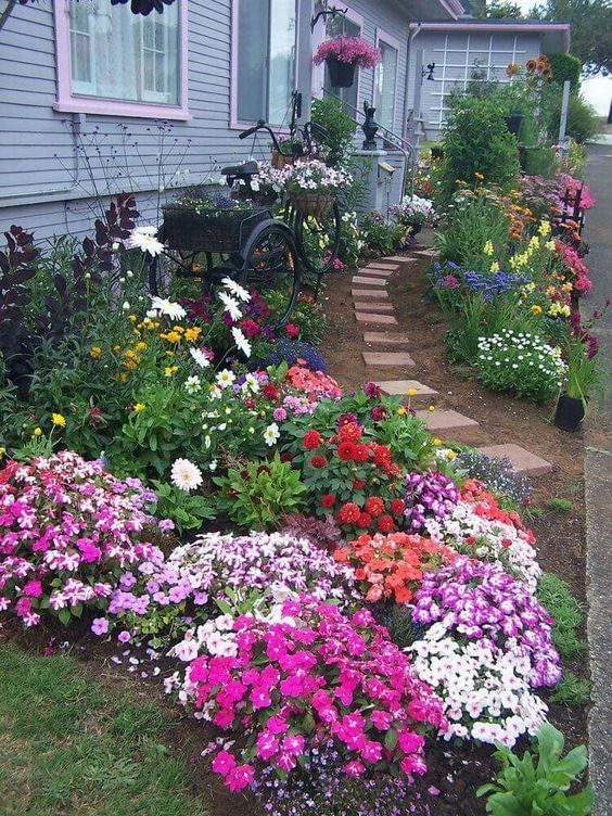 List Of Best Flowering Perennials Plants That Do Well In 400 x 300