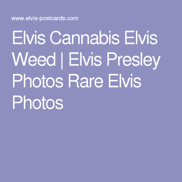 Elvis Cannabis Elvis Weed | Elvis Presley Photos Rare Elvis Photos