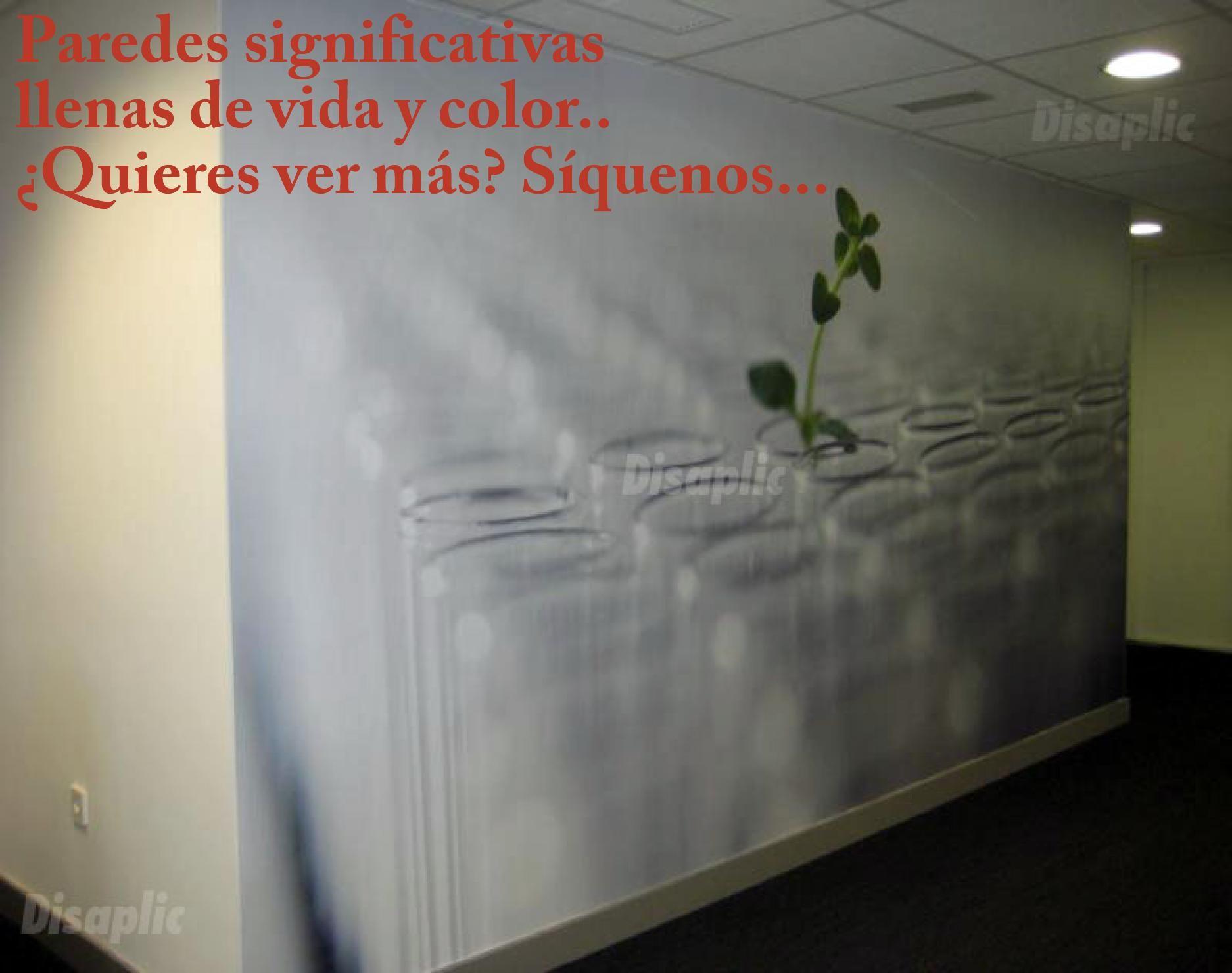 Imagen desarrollada sobre pared