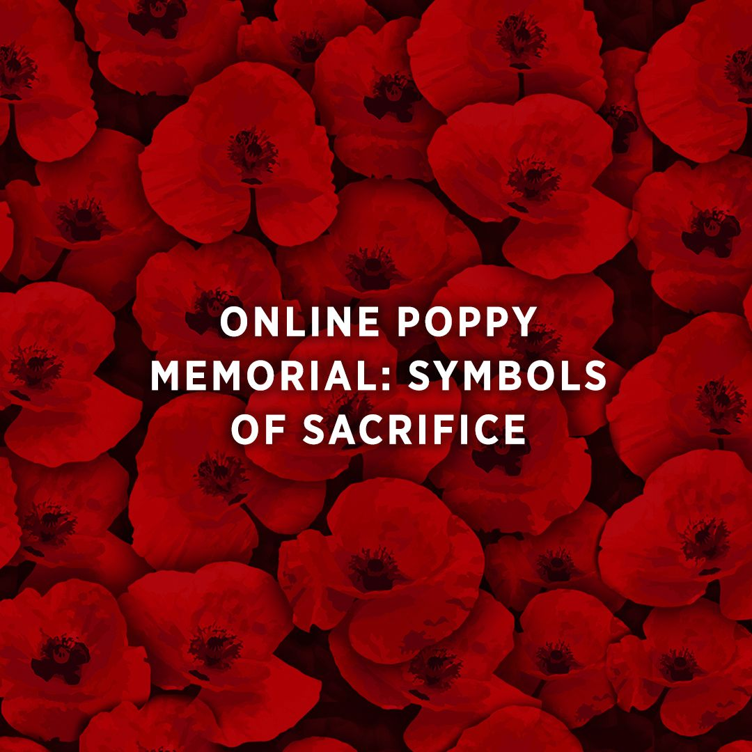 Remember America S Fallen By Dedicating A Poppy In Their Memory
