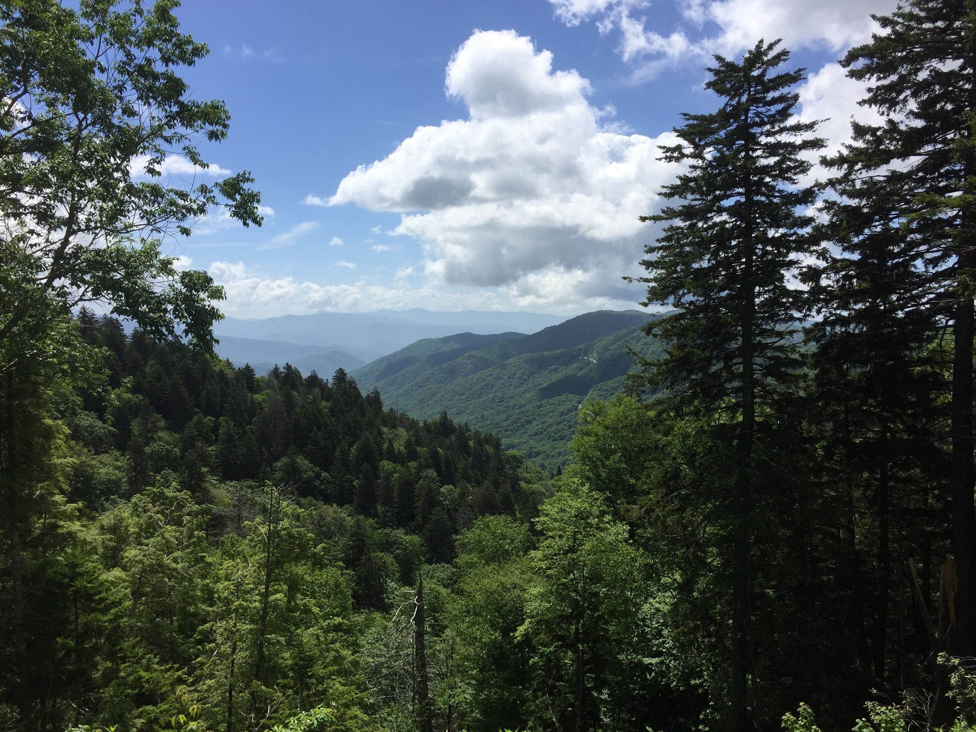 Newfound Gap, Great Smoky Mountains National Park | Great ...