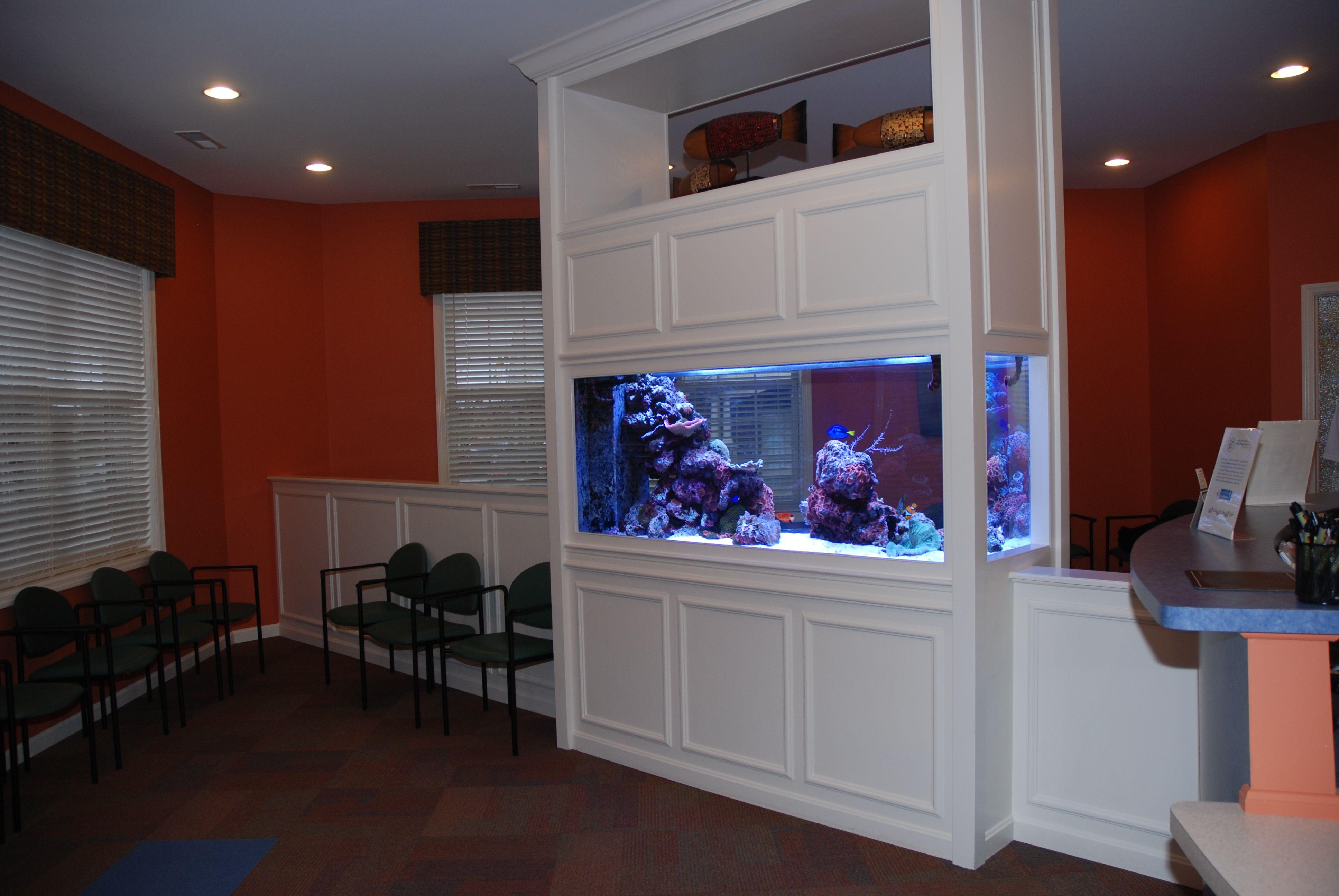 Custom built 250 gallon saltwater reef aquarium custom for Built in fish tank
