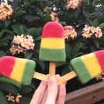 DIY: como fazer picolé colorido