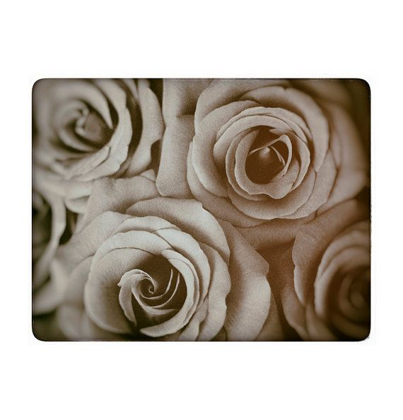 Vintage Roses Flower Photography https://www.etsy.com/listing/184672322/vintage-roses-flower-photography?ref=shop_home_active_9  $25.00