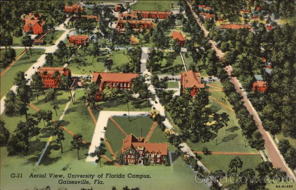 Aerial View University of Florida Campus vintage postcard