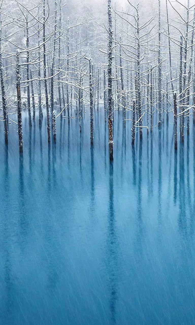 Download Wallpaper Home Screen Snow - 2c0dd8501b150f74f1b55d4b0b62941b  Photograph_452392.jpg
