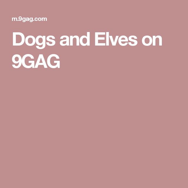 dogs and elves on 9gag