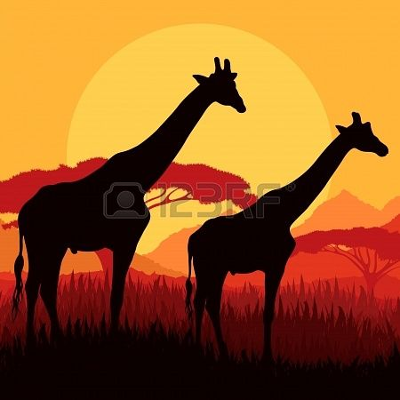Jirafa Siluetas De La Familia En áfrica Montaña Salvaje Naturaleza Ilustración Vectorial Paisaje De Fondo Dibujo De Jirafa Siluetas Animales Ilustración Vectorial