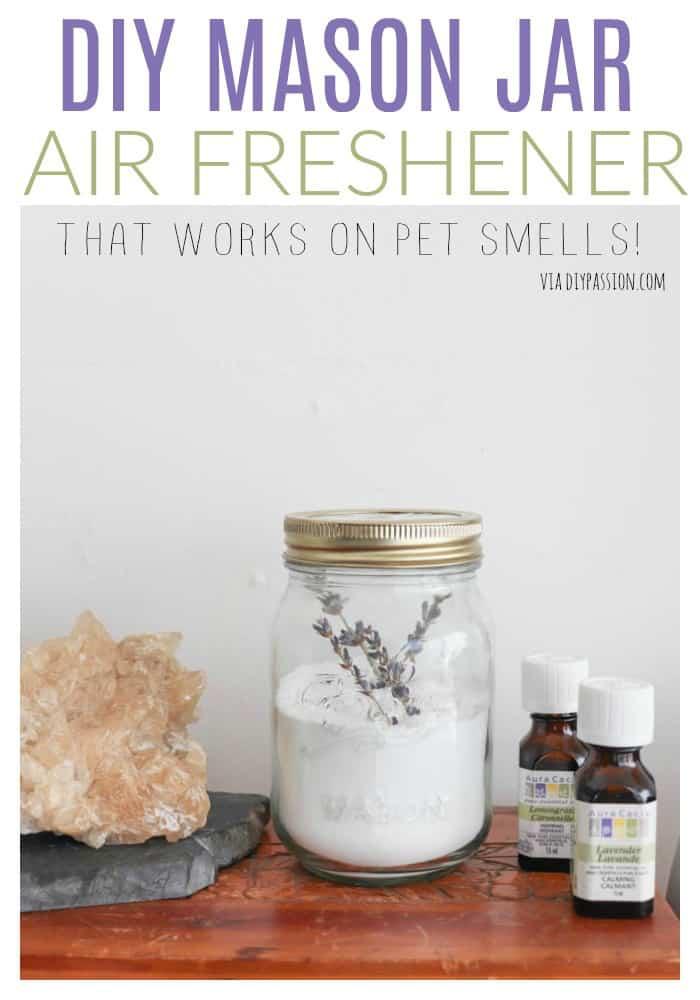 DIY Air Freshener to Combat Pet Odors Diy air freshener