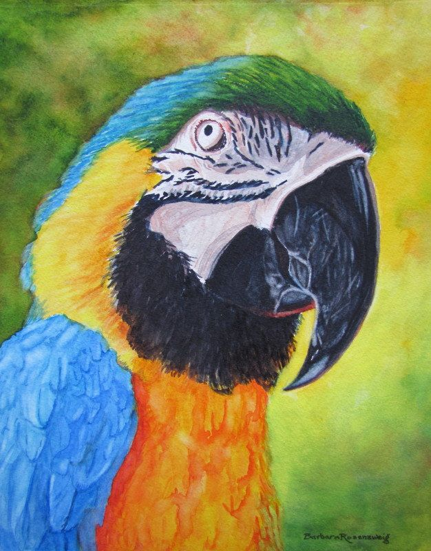 Parrot Macaw Bird Painting, Exotic Wildlife Watercolor
