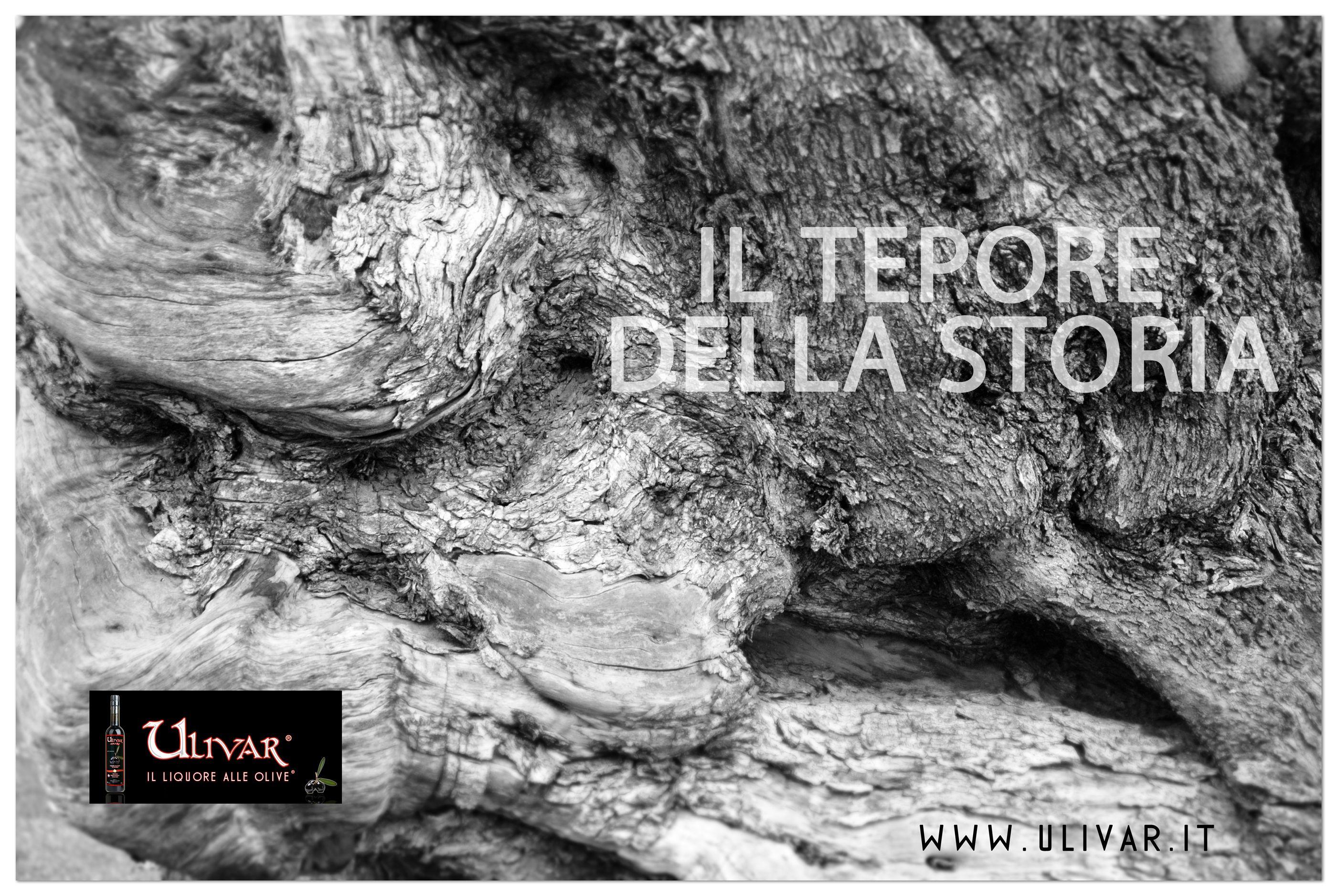 #ilteporedellastoria #zeroaromi #liquorealleolive