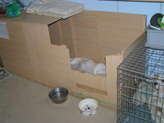 whelping box & whelping box | Gone to the Dogs | Pinterest | Whelping box Dog ... Aboutintivar.Com