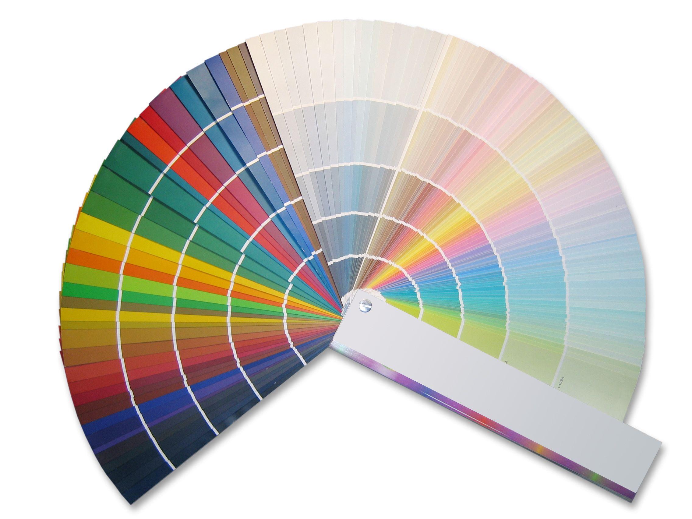 Pantone Colores Pinturas Circulo Cromatico
