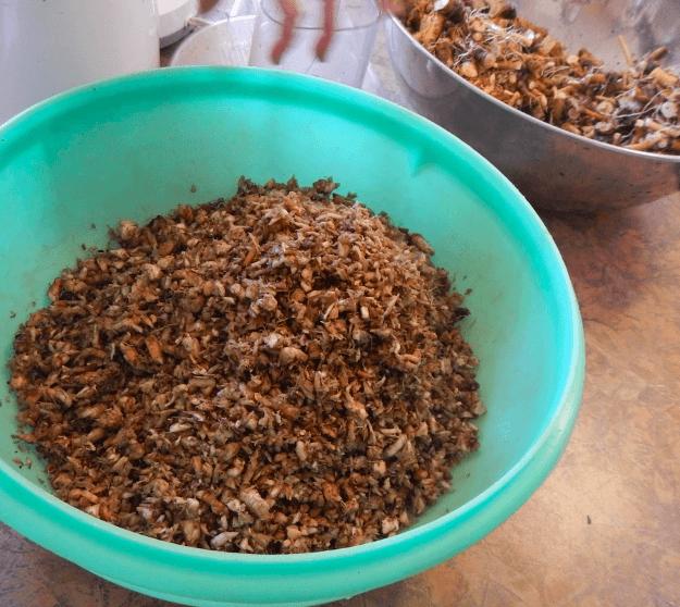 Best Way to Make Dandelion Root Tea | Dandelion recipes ...