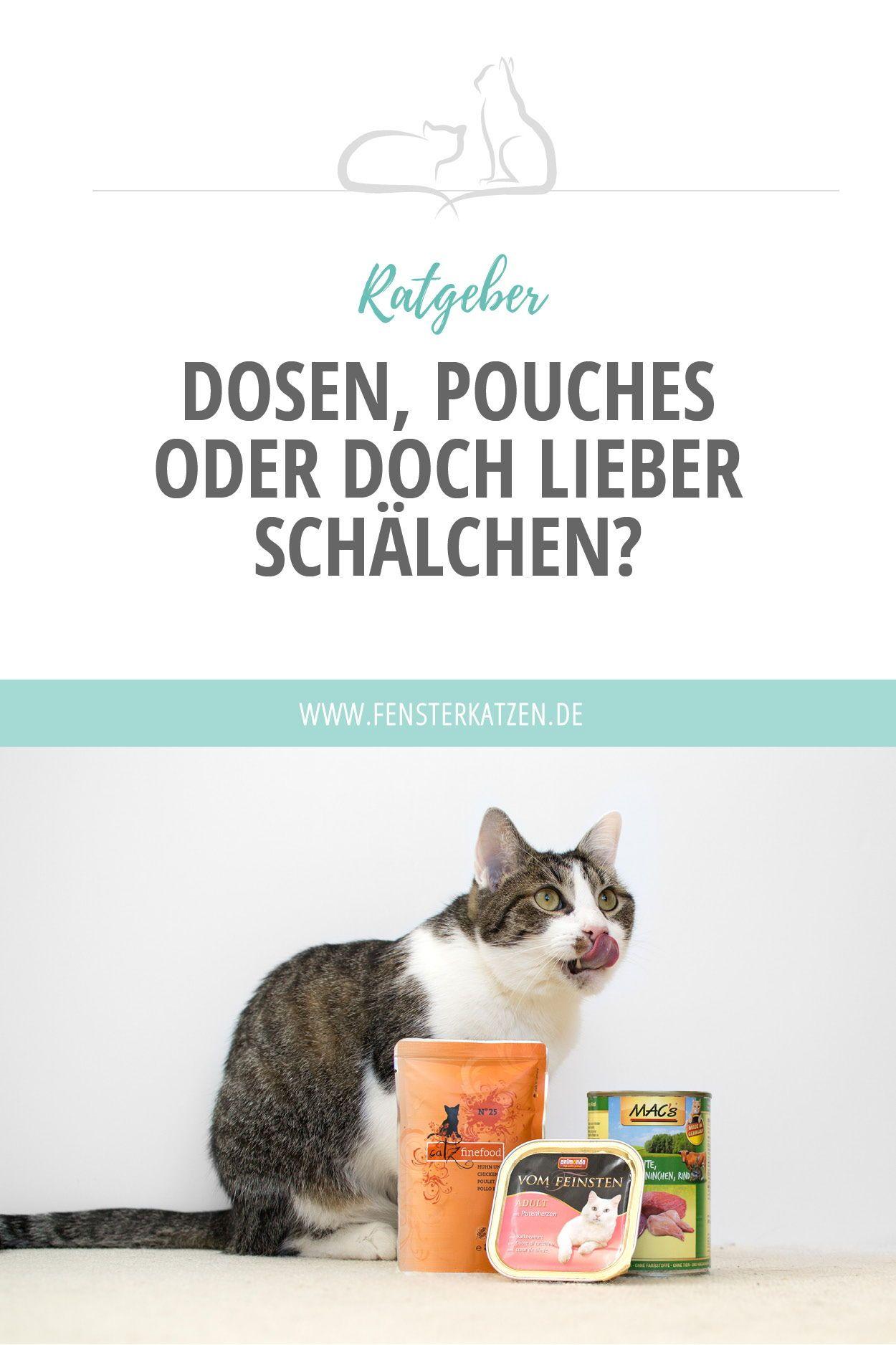 Dosen Pouches Oder Doch Lieber Schalchen Katzen Ernahrung Katzenkrankheiten Und Katzen