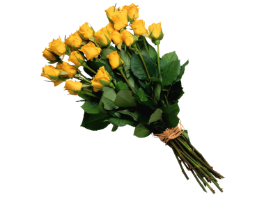 Yellow Hot Pepper Png Transparent Image Freepngimage Com Yellow Rose Bouquet Flowers Bouquet Yellow Roses