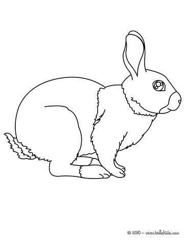Rabbit coloring page. Cute and amazing farm animals coloring page ...