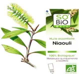 les 25 meilleures id es de la cat gorie huile essentielle niaouli sur pinterest huile. Black Bedroom Furniture Sets. Home Design Ideas