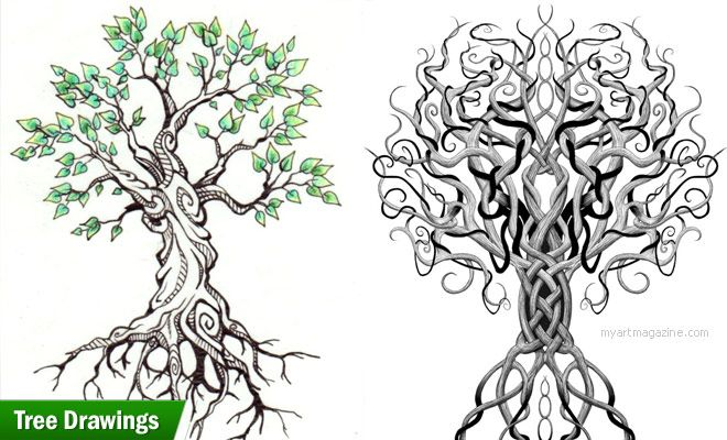 25 Beautiful Tree Drawing Examples From Around The World Tree Drawing Drawing Examples Drawings