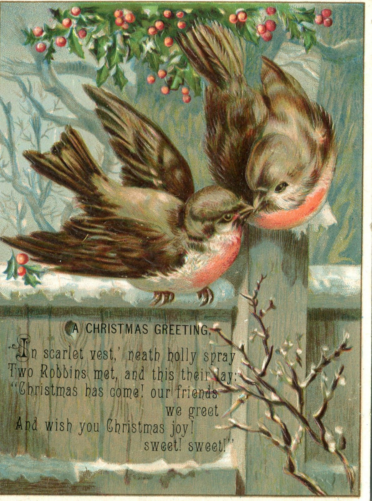victorian christmas cardembossed robinssnowholly and