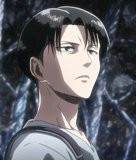 Levi Ackerman Shingeki No Kyojin Anime Manga Y Attack On Titan Attack On Titan Levi Captain Levi Attack On Titan Anime