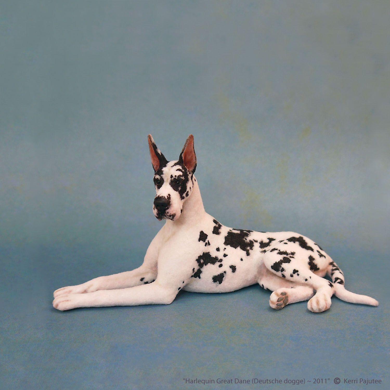 Harlequindane1 Jpg Great Dane Dogs Dane Dog