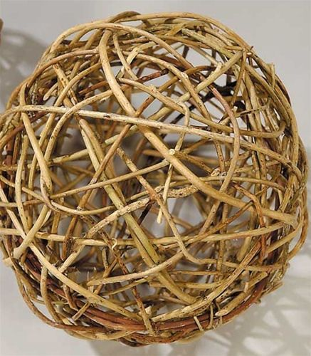 Curly Willow Decorative Balls Curly Willow Twig Crafts And Wreaths Impressive Natural Decorative Balls
