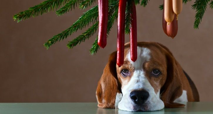 10 Quotes to Keep You Sane Over the Holidays | Christmas ...