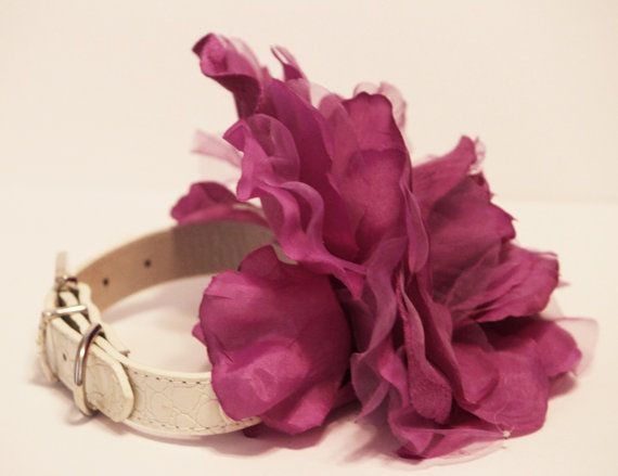 Purple floral Dog Collar. Purple Flower with High Quality White Leather Collar,  Wedding Dog Accessory. $39.99, via Etsy.