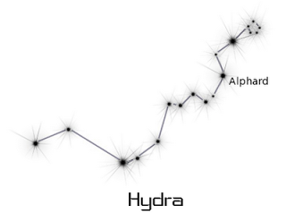 hydra constellation drawings