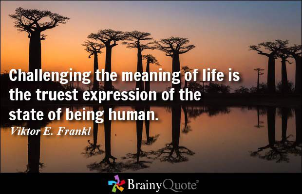 The state of being human quote