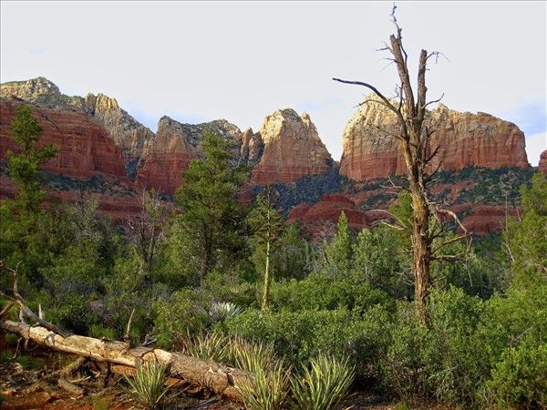 Top Things To Do In Sedona Arizona Vacation Pinterest - 10 things to see and do in sedona
