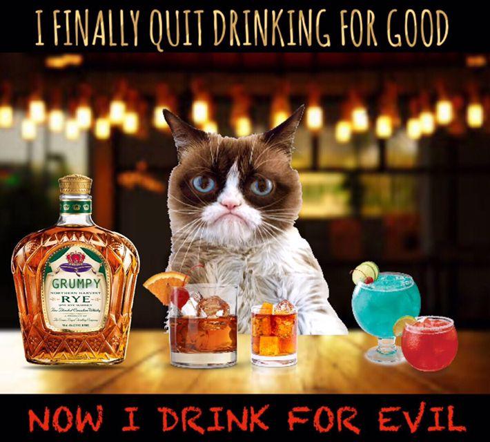 Grumpy Cat Birthday Youtube: Pin By Lynn Albanese On Grumpy Cat