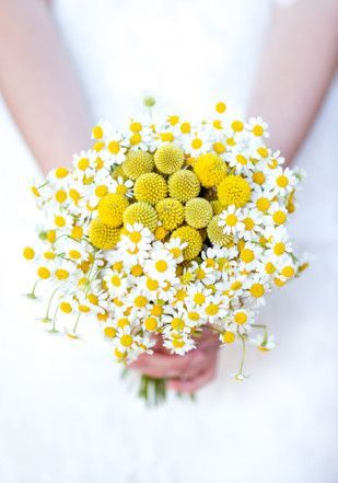 Daisies and burst of yellow! So simple, but so much to love.