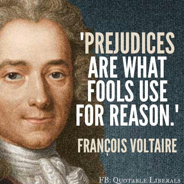 Prejudices Are What Fools Use For Reason.