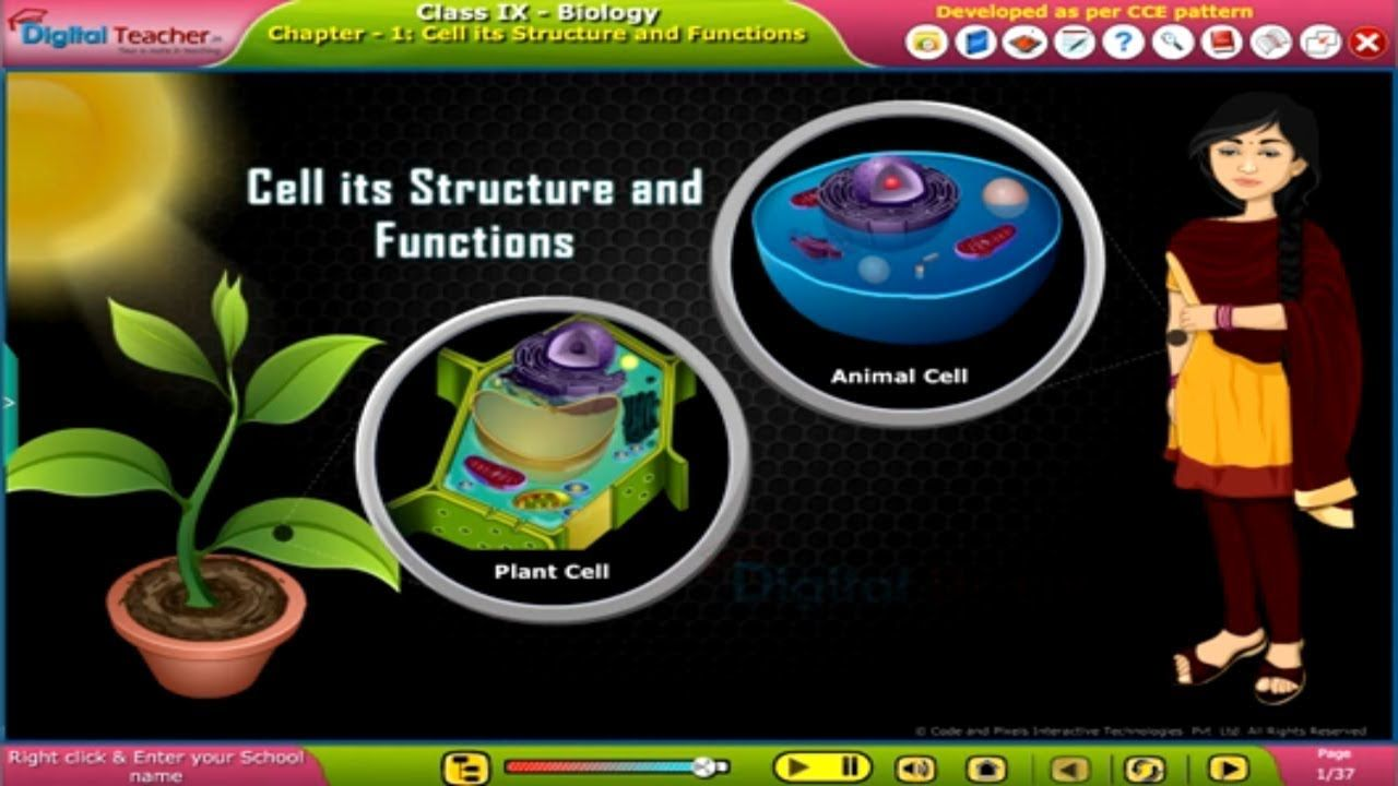 Cell its Structure and Functions, Class 9 Biology SSC ...