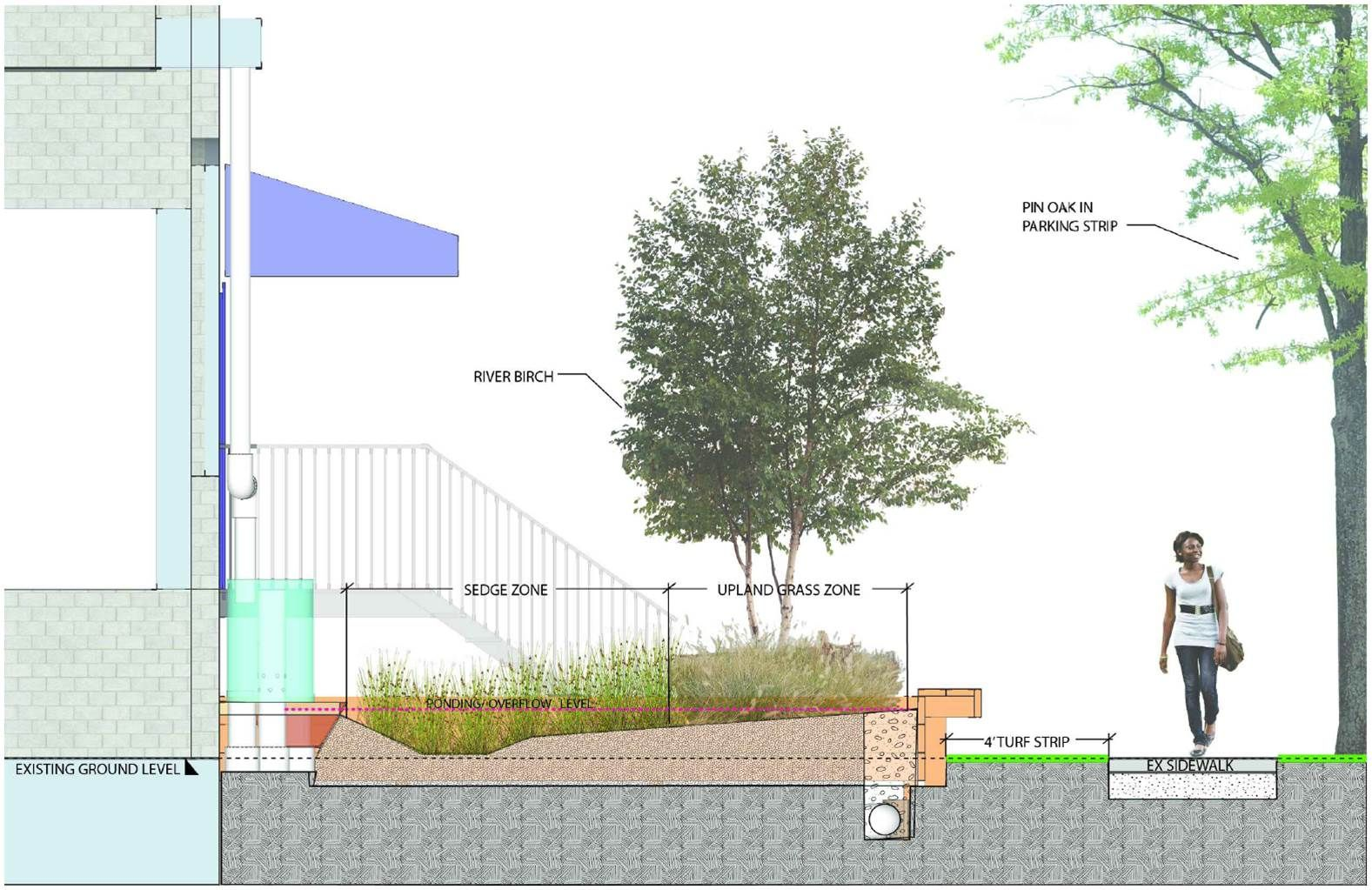 constructed wetland Climate Change Issues Projects Pinterest