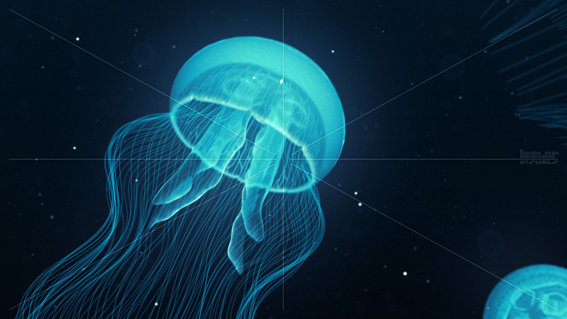 A loop of blue luminescent jellyfish gracefully swimming by ... for Bioluminescent Jellyfish Gif  585eri
