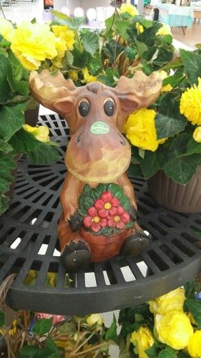 I almost bought this today. Just so I could put a moose in front of my house. I couldnt find a squrril so I didnt. #onlyspnfamilyunderstands