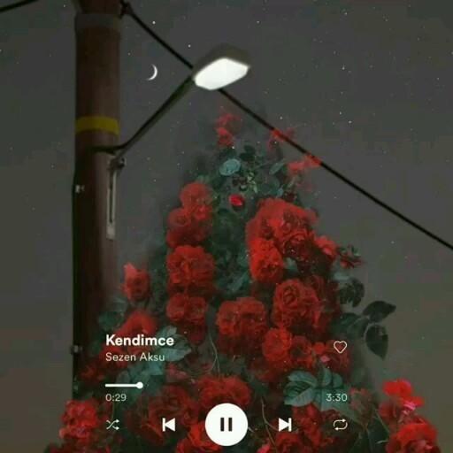 Sezen Aksu Kendimce Video Sarkilar Muzik Muzik Indirme