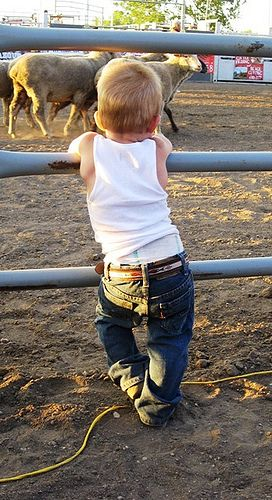Reminds me of my son when we go to rodeos