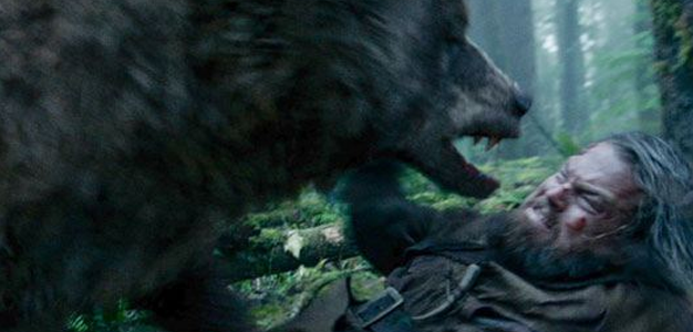 O Regresso ataque do urso
