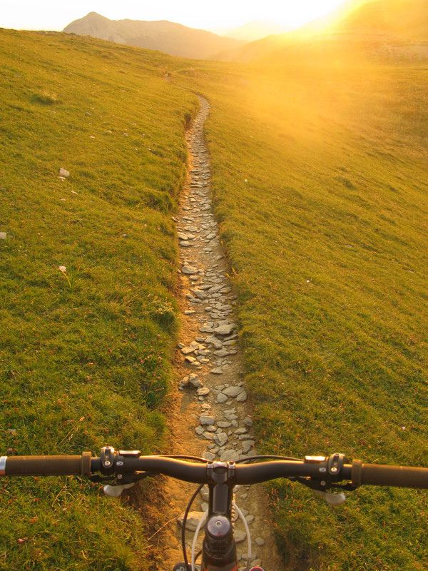Omg So Want To Ride Here Mountain Biking Bike Trails