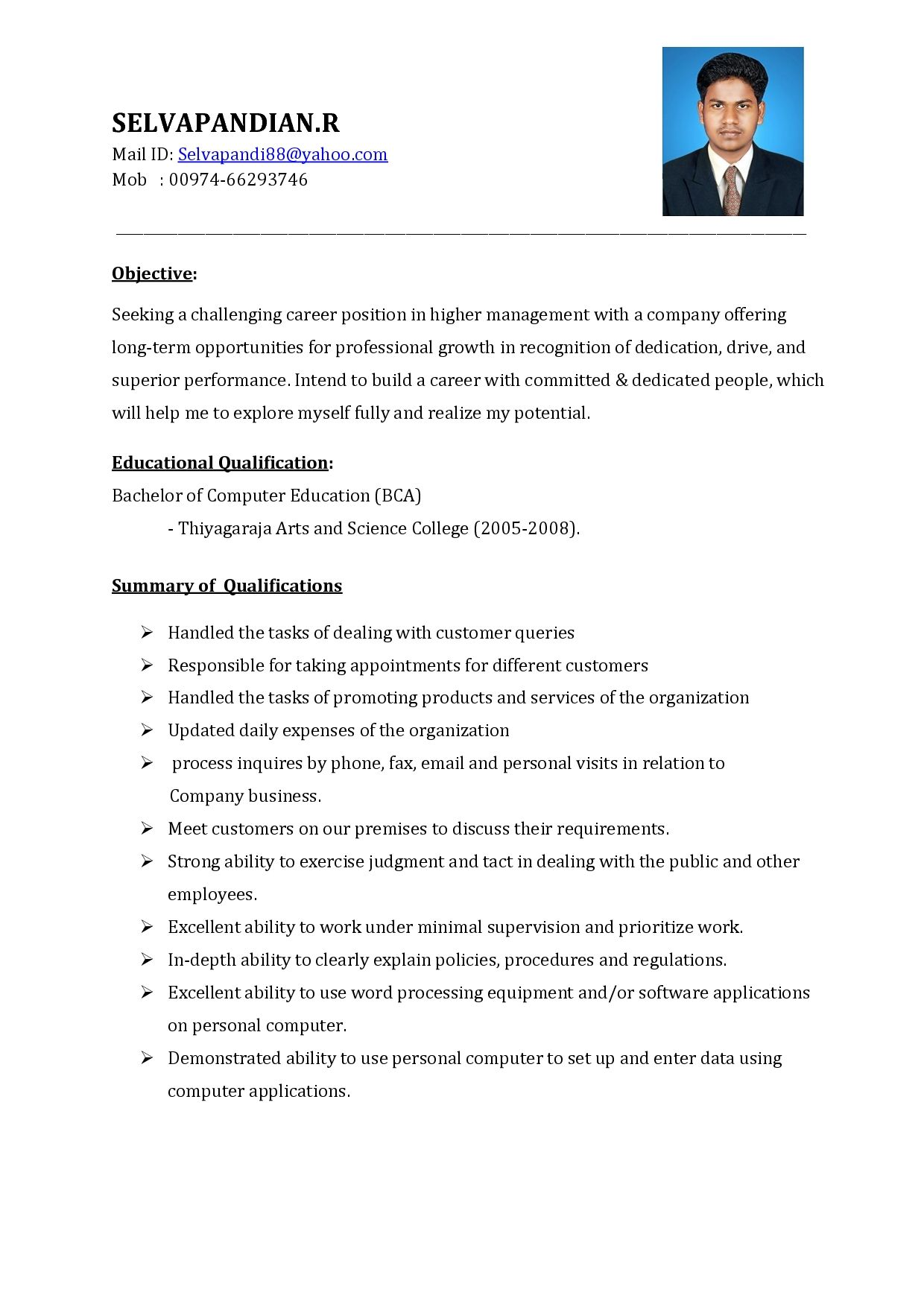 Sales Executive Resume Sample Summary Document Template Samples