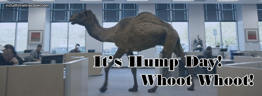 its hump day whoot whoot Facebook Cover InstallTimelineCover.com