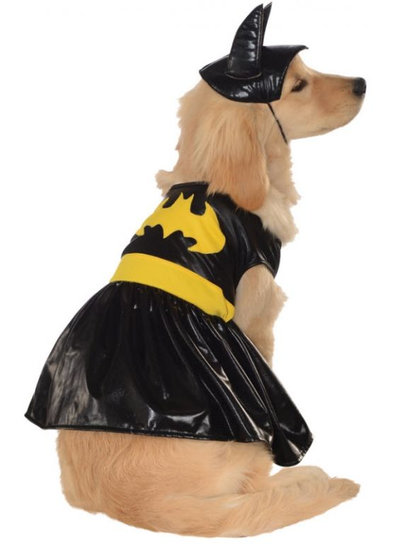 Batgirl Pet Costume Pet Halloween Costumes Large Dog Costumes